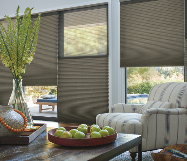 Merveilleux Duette Honeycomb Shades Northwood_Living Room